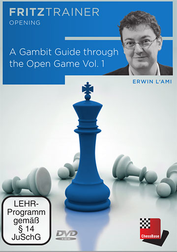 A Gambit Guide through the Open Game Vol. 1