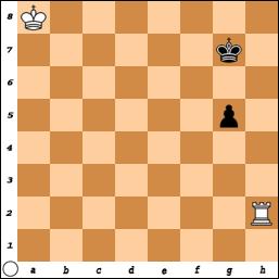 Karsten Mueller Chess Endgames 8 Multilanguage (1 dvd)