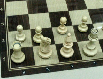 The beer sheva chess club chessbase - Chess board display case ...