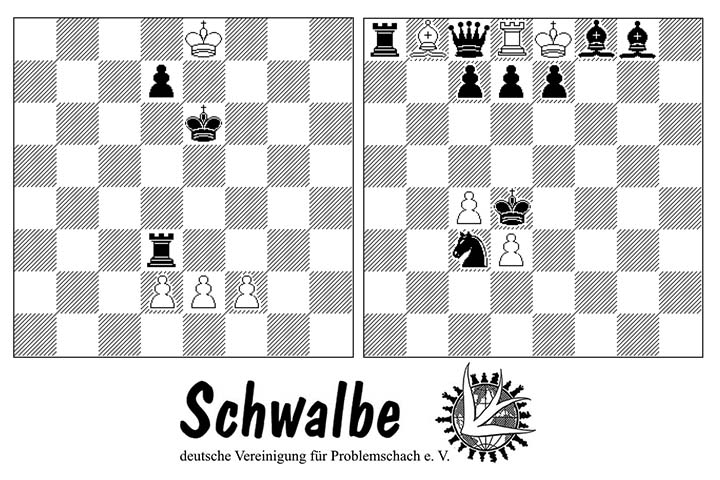 """""""Schwalbe"""" – history tour of the German chess problem society"""